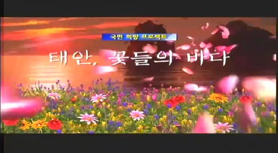 2009 안면도 꽃박람회 - 꽃들의 바다