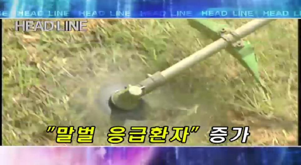 2008년 8월 28일 목요일 뉴스