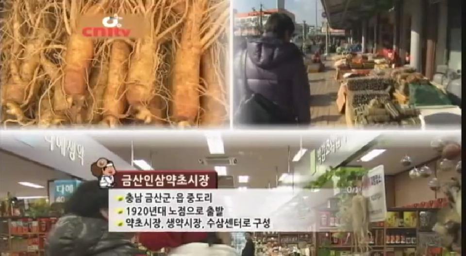 시장탐방 프로젝트 금산인삼약초시장
