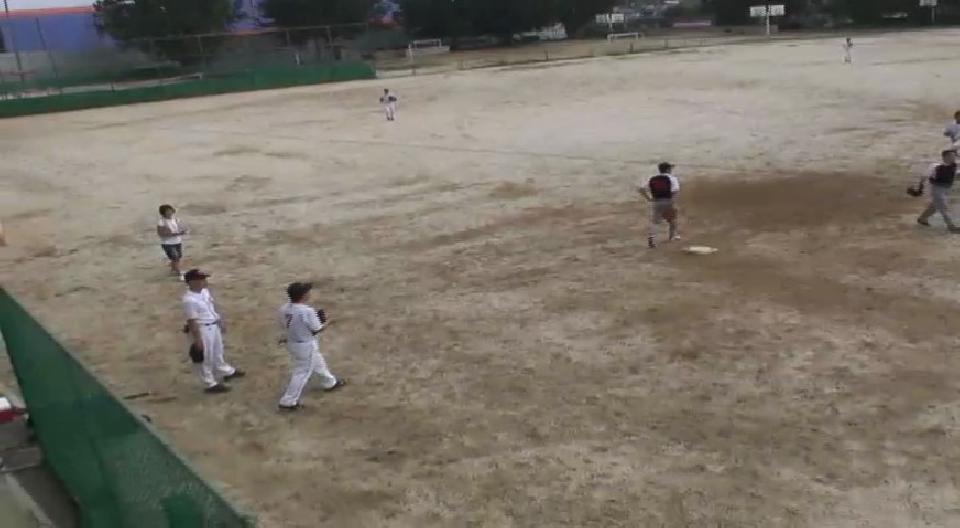 야구 동호회