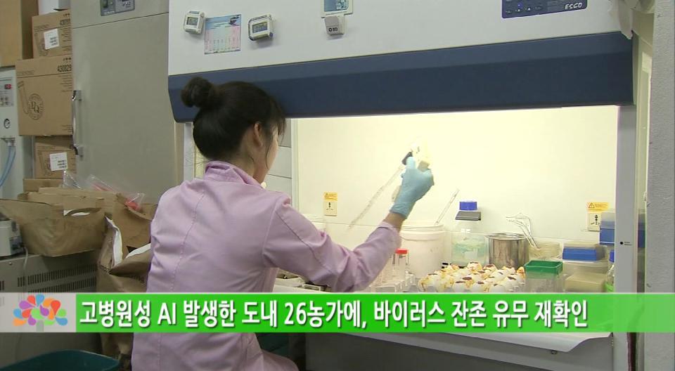 '조류인플루엔자 상시예찰' 검사로 방역 앞장