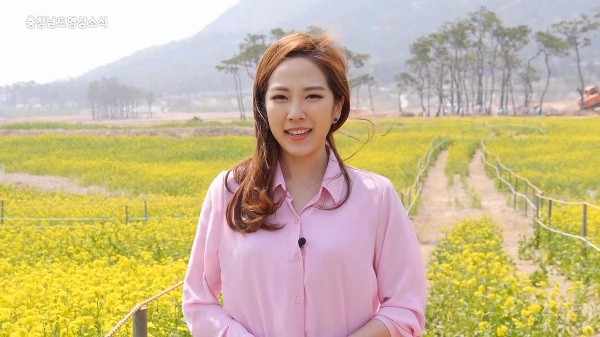 [뉴스]충청남도 영상소식 11회