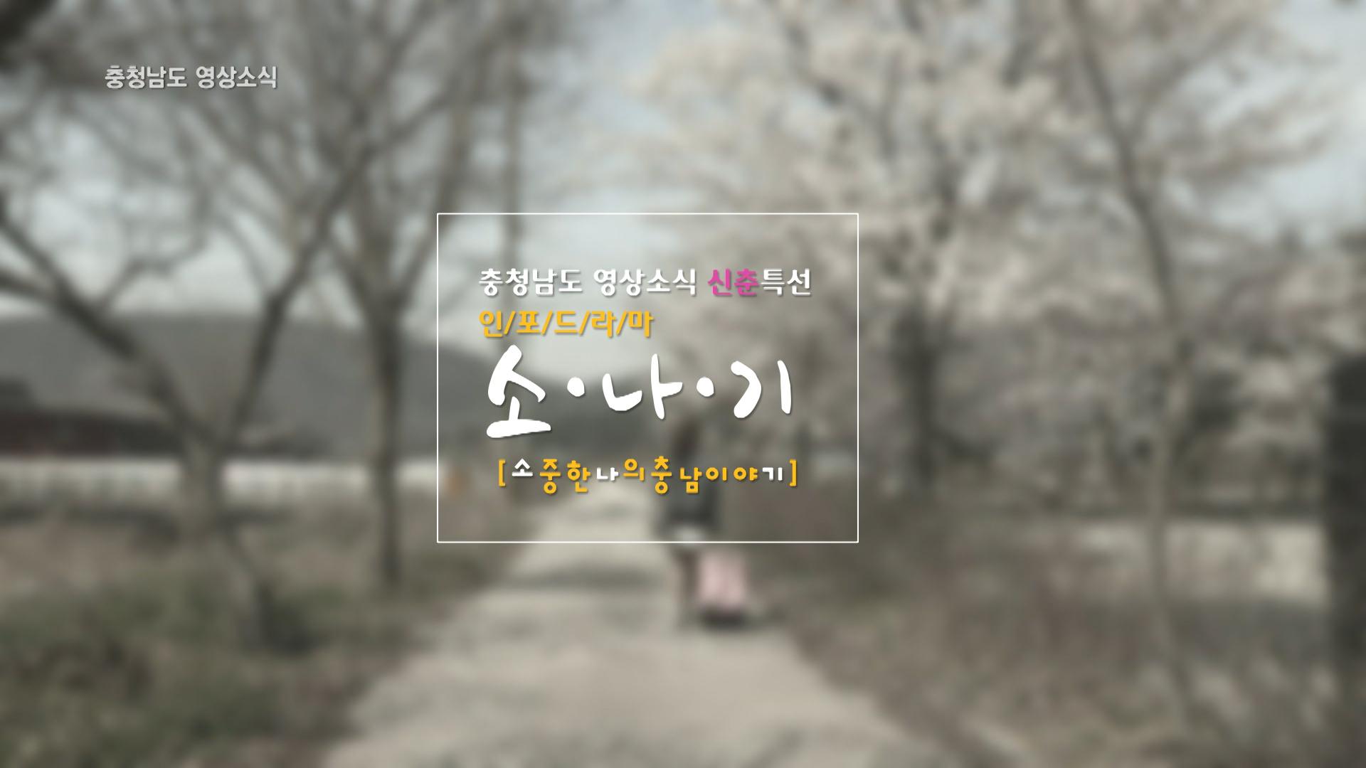 [종합]충청남도 영상소식 14회