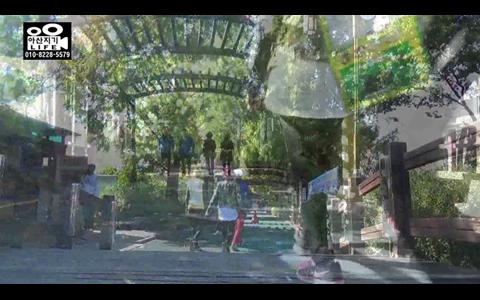 [영상] 아산 신정호공원의 소소한 가을 풍경