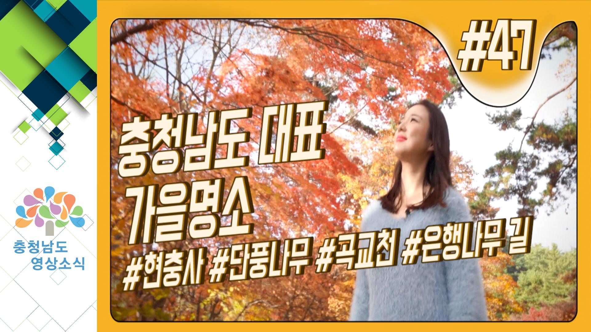 [영상] 추사 김정희, 추녀 박현미