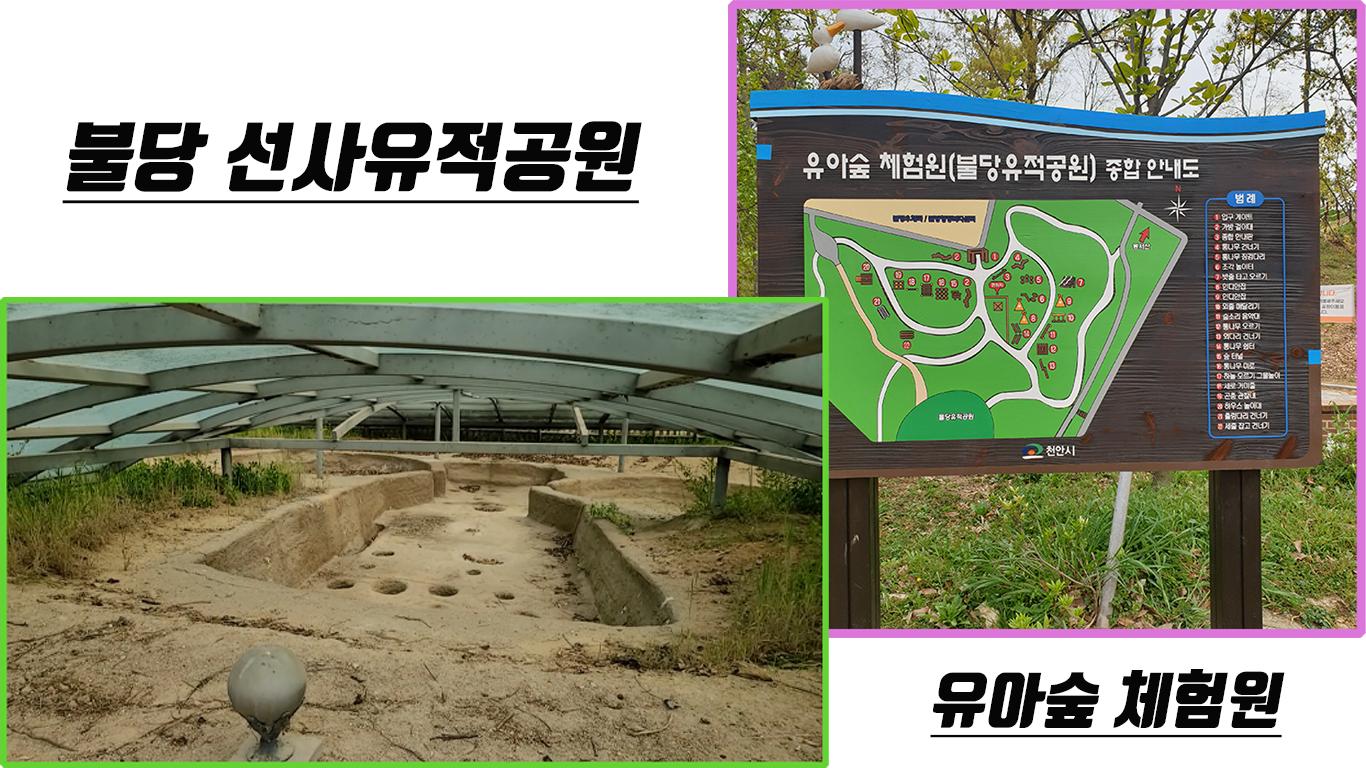천안 불당동 선사유적공원과 유아숲 체험원