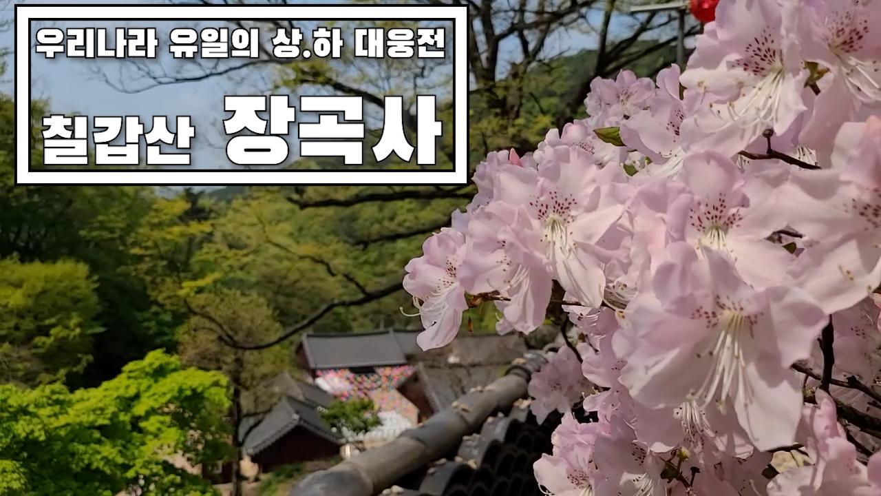 유구한 역사의 문화재를 품은 칠갑산 천년고찰 장곡사