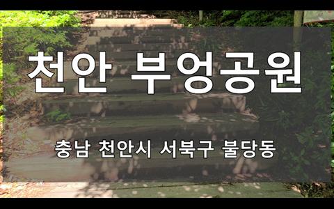 기분좋은 풀내음 가득한 천안 부엉공원