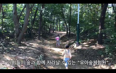 숲과 함께 자라나는 아이 '유아숲체험원'