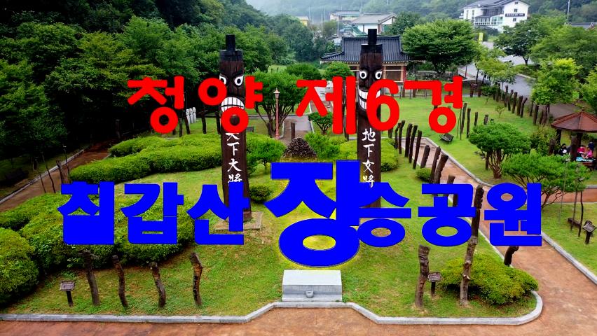 청양 제6경 칠갑산 장승공원